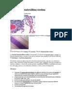 Tinción hematoxilina-eosina