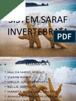 Sistem Saraf Invertebrata