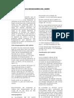 Ciclo Biogeoquimico Del Cadmio22