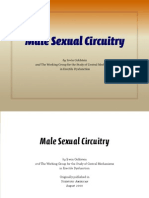 Male Sexual Circuitry
