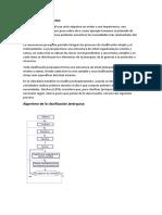Clasificación jerárquica.docx