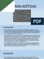 Bacterias Aceticas Microbiologia