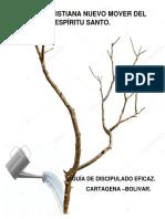 libro de discipulado AVANCE.docx