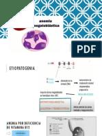 Anemia Megaloblástica (1)