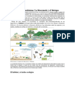 Concepto de Ecosistema
