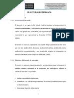 III Estudio de Mercado 111[1]
