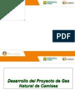 20. Desarrollo Del Proyecto de Gas Natural de Camisea