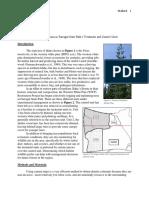 mallard- farragut lab report