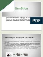 6.-Genética