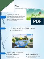 3. Ecosistema