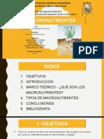 377421575-MACRONUTRIENTES-2F-Fundamentos-de-La-Ing-Ambiental.pptx