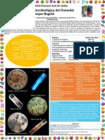 PROCESOS BIOLOGICOS poster.pdf