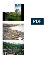 impacto de la naturaleza positovo.docx