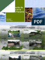 Recuperación de Los Ríos en Panamá