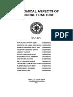 SP ANATOMI.pdf