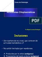 INCLUSIONES CITOPLASMICAS