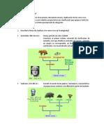 Guia Taxonomía Biología.docx
