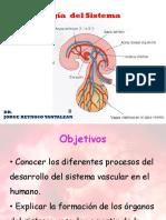 Vascular Embrio Clase