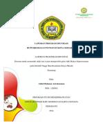 dokumen.tips_laporan-program-imunisasi.docx