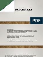 Adultez y Senectud
