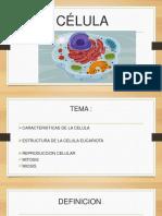 estudio de la celula