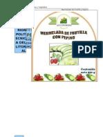Informe_proyecto Mermelada de Pepino Con Frutilla