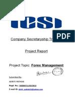 CS Project Report-Forex Management