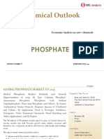 OGA_Chemical Series_Phosphate Market Outlook 2019-2025