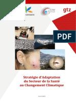 Stratégie Nationale Adaptation Santé Au CC