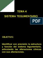 11 SISTEMA TEGUMENTARIO.ppt
