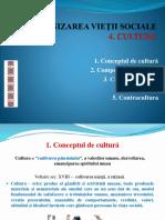Cultura - Prezentare Pp