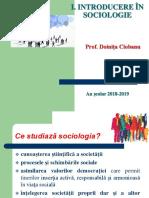 Sociologia ca stiinta - prezentare pp