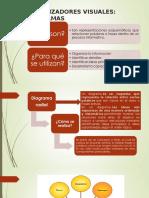 ORGANIZADORES VISUALES (1)