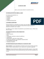 CALIDAD DE CARNE.docx