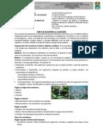 GUIA N° 02 VALORANDO EL ECOSISTEMA.pdf