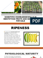 KNOWLEDGE/SKILLS IN IDENTIFYING FRUITS/SEEDLINGS FOR SALE
