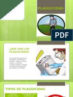 plaguicidas medicina del trabajo.pptx