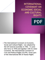 International Covenant on Economic Social and Cultural Rights
