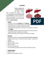 Enfermedades Sistema Digestivo