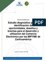 Estudio de diadnostico e identificacion de oportunidades en el comercio electronico