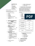 resumen ejecutivo(maq).docx