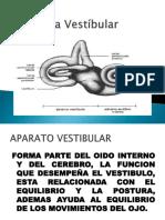 Via Vestibular.pptx