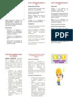 Plegable Política, Roles, Responsabilidades.docx