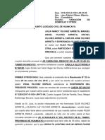 MANUEL PRO DIVISION Y PARTICION.docx