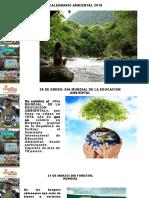 5 Calendario Ambiental