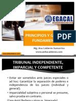 OK 4-8-16 ACS CAP-Principios y Garantias Fundamentales