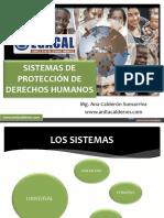 11-8-16 ACS CAP Sistema de Proteccion DDHH