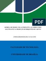 BRIQ-AGLUT-.pdf