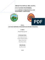 Taxonomia de Hongos Fitopatogenos