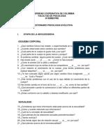 CUESTIONARIO PSICOLOGICO ADOLECENTES